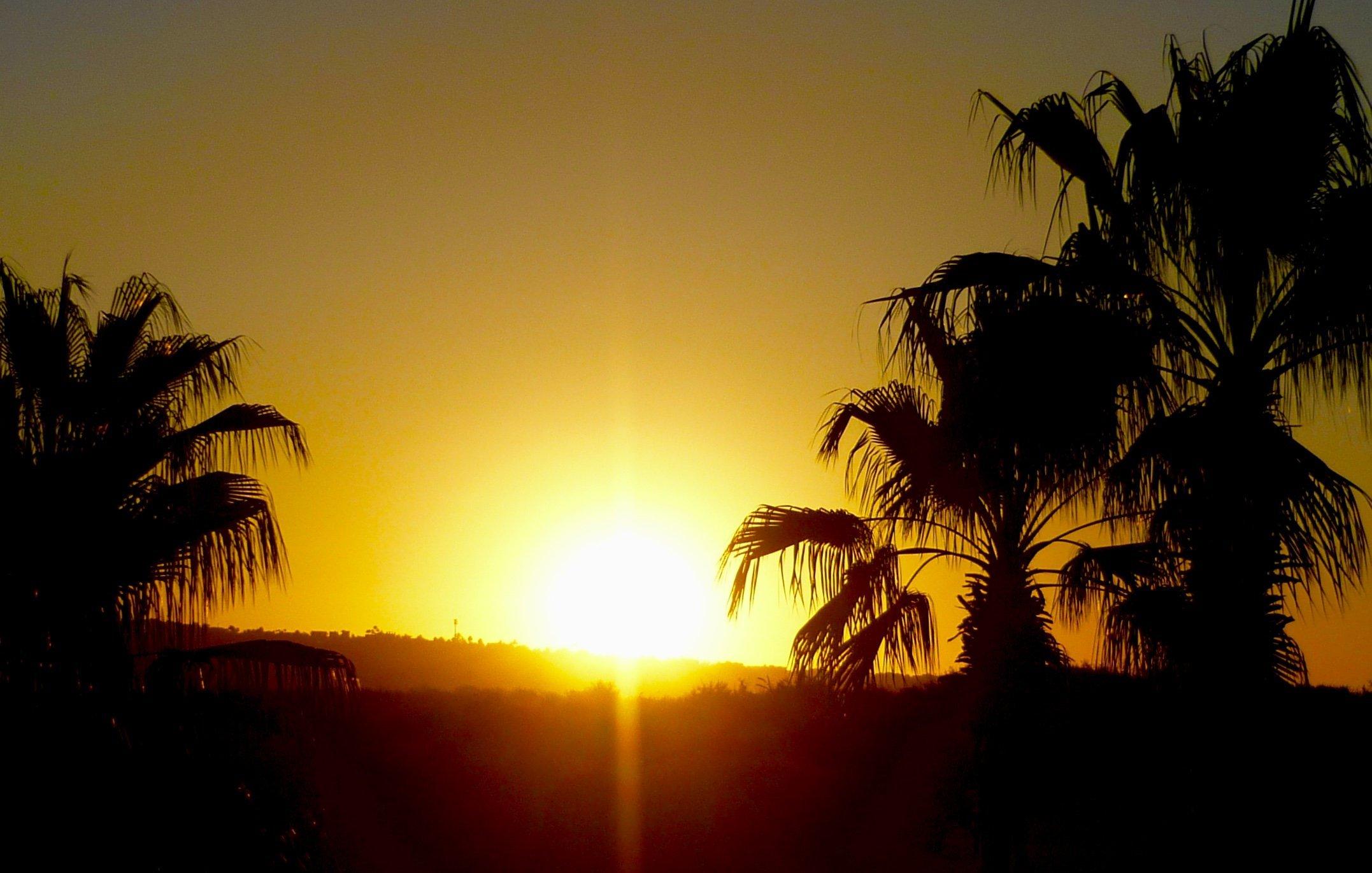 SUN-shiny Day